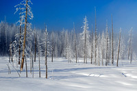 "Snow, Winter, Wyoming, ""Yellowstone National Park"""